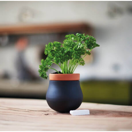 Leonardo Serra fűszernövény tartó / kaspo fekete S